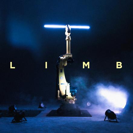 limb1.jpg
